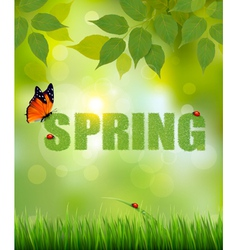 Green Spring letters made of grass on sunny forest vector image vector image