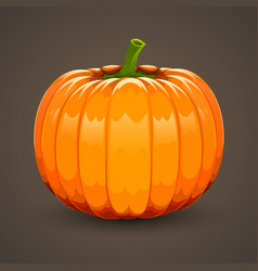 pumpkin on dark background vector image