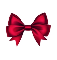 Shiny Red Satin Gift Bow Isolated White vector image