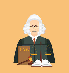 Male judge in wig with law and justice set icon vector