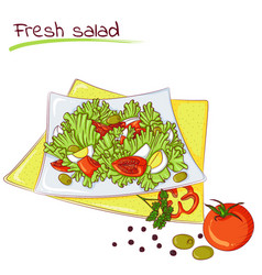 fresh vegetable salad vector image vector image