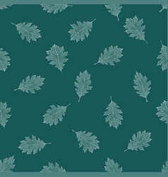 Seamless pattern of white autumn leaves of red oak vector