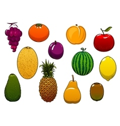 Sweet fresh fruits and berries in cartoon style vector