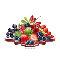 Mix of fresh berries isolated on white background vector