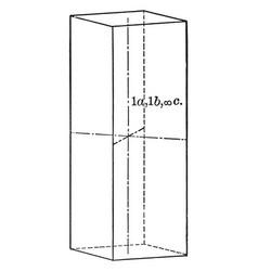 Orthohombie prism vintage vector