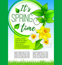 Springtime greeting holiday poster design vector
