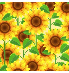 Vintage seamless pattern with flowers sunflowers vector