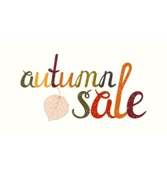 Autumn sale inscription with birch leaf vector