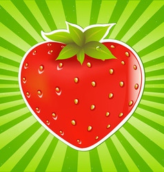 Strawberry and sunburst vector