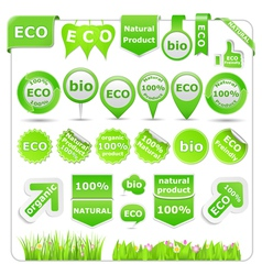 green eco design elements vector image