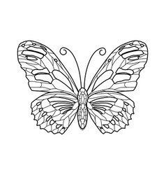 black and white butterfly contour vector image vector image