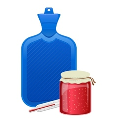 hot water bottle thermometer and raspberry jam vector image vector image