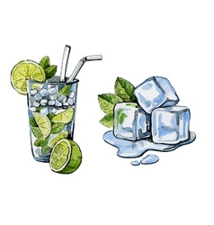 cocktail and ice vector image