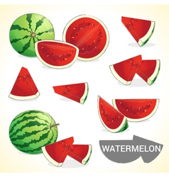 Set of watermelon in various styles vector