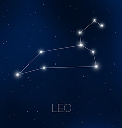Leo constellation in night sky vector