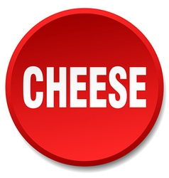 Cheese red round flat isolated push button vector