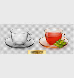 Glass cup transparent glass cup with tea vector