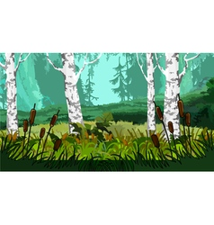Landscape with marsh the reeds in the forest vector