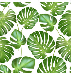 seamless tropical leaves pattern strong vector image vector image