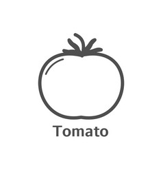 tomato thin line icon isolated vegetables linear vector image