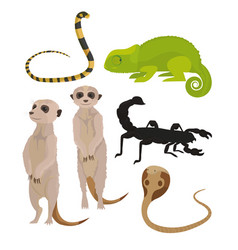 Animals of african desert vector