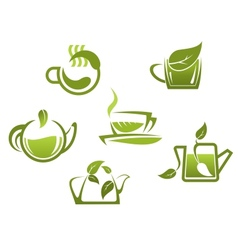 Green tea symbols and icons vector image