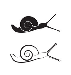 Snail on white background reptile animals vector