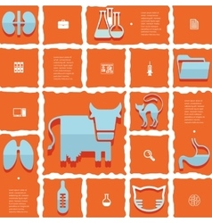 Veterinary flat infographic vector