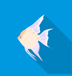 Angelfish common fish icon flat singe aquarium vector
