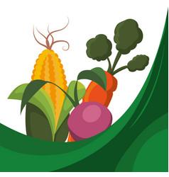 fresh vegetables raw food vector image
