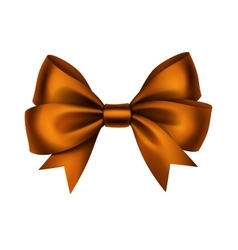 Orange Satin Gift Bow Isolated on White vector image
