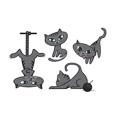 Grey cats collection vector