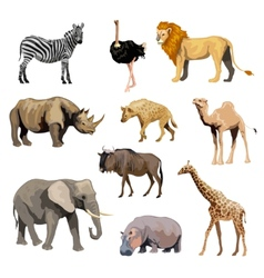 Wild african animals set vector