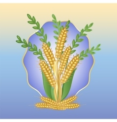 Bouquet of ears of wheat vector