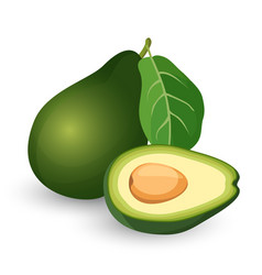 ripe avocado cut in half with leaf vector image vector image