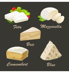 Set of different kinds of white cheese Realistic vector image