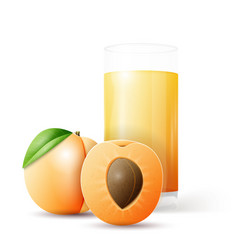 Whole and half apricot and glass of juice vector