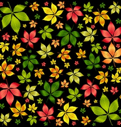 colorful autumn leafs vector image