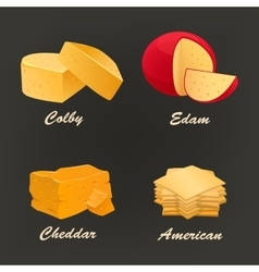 Collection of different kinds of yellow cheese vector