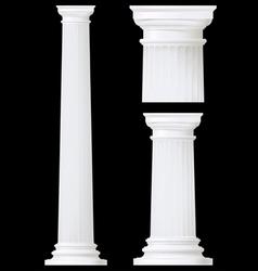 doric column vector image vector image