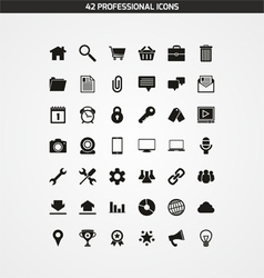 42 PROFESSIONAL ICONS vector image