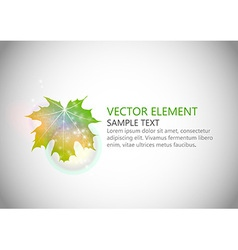 Background autumn single leaf text green vector