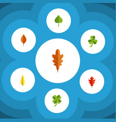 flat icon foliage set of foliage hickory leaf vector image