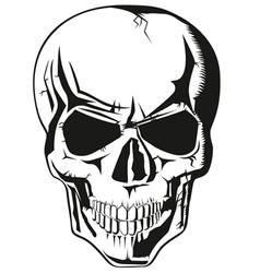 Human skull new vector