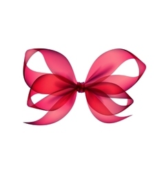 Pink transparent bow top view on white background vector