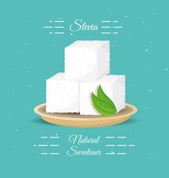 stevia natural sweetener with leaves vector image