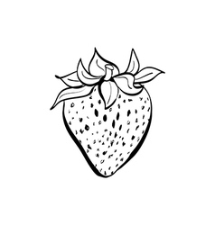 doodle strawberry vector image