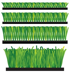 Artificial grass - synthetic grass - artifi vector