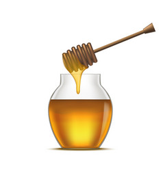 Realistic detailed dipper and glass jar honey vector