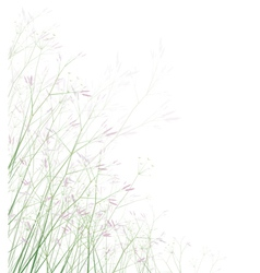 Spring meadow isolated vector